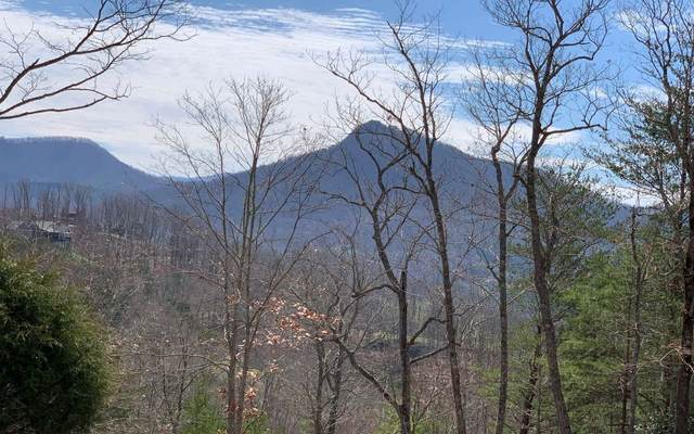 LOT42 Dan Knob, Hayesville, NC 28904 (MLS #296094) :: Path & Post Real Estate