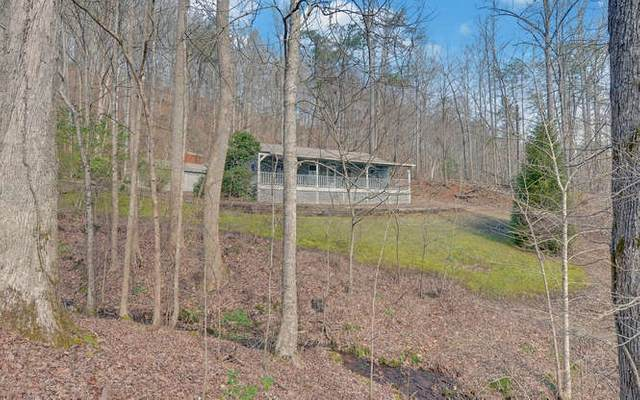 4033 Wildwood Lane, Young Harris, GA 30582 (MLS #296129) :: RE/MAX Town & Country
