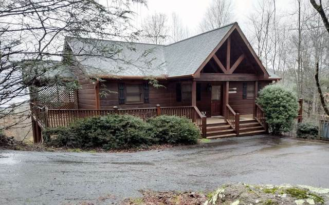 260 Mountain High Drive, Mineral Bluff, GA 30559 (MLS #296173) :: RE/MAX Town & Country