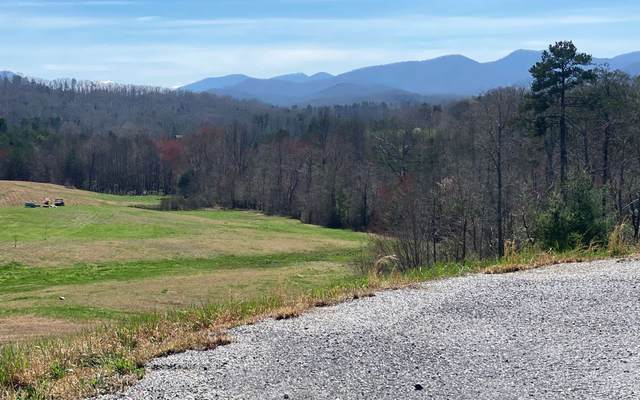 LOT30 The Preserve, Young Harris, GA 30582 (MLS #296235) :: RE/MAX Town & Country