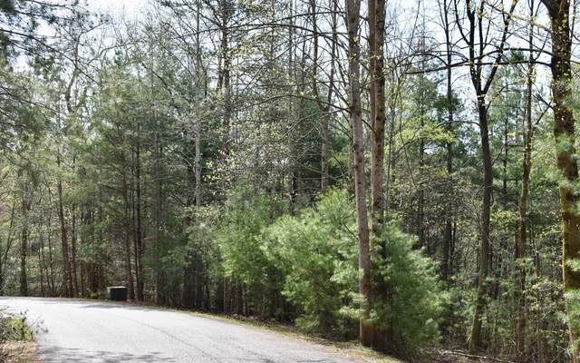 150B Lazy River Lane, Ellijay, GA 30536 (MLS #296297) :: Path & Post Real Estate