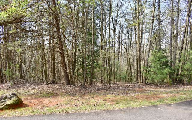 150A Blackberry Circle, Ellijay, GA 30536 (MLS #296298) :: Path & Post Real Estate