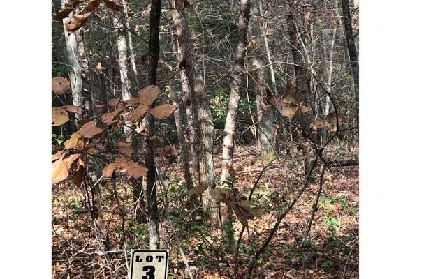 LOT 3 Dancing Rabbit Lane, Blairsville, GA 30512 (MLS #296308) :: Path & Post Real Estate