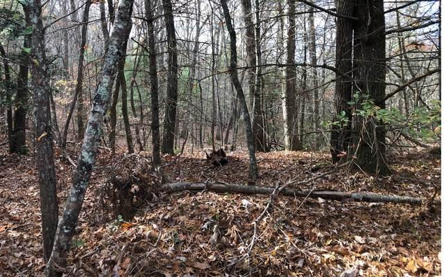 11 A Dancing Rabbit Lane, Blairsville, GA 30512 (MLS #296310) :: Path & Post Real Estate