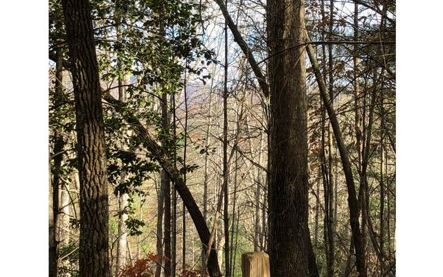 LOT 8 Bunny Trail, Blairsville, GA 30512 (MLS #296315) :: RE/MAX Town & Country
