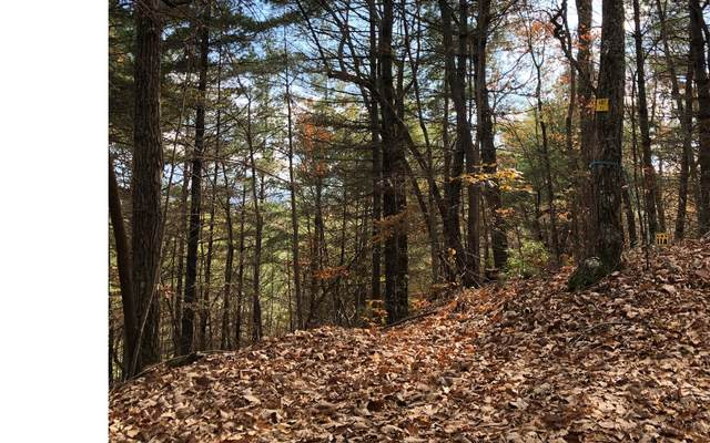 LT 10 Bunny Trail, Blairsville, GA 30512 (MLS #296318) :: Path & Post Real Estate