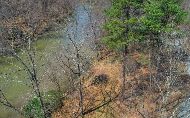 LT 83 Valley Lane, Mineral Bluff, GA 30559 (MLS #296334) :: RE/MAX Town & Country