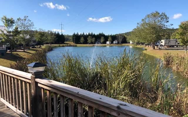 LT 3 Mountain Meadows Dri, Morganton, GA 30560 (MLS #296359) :: RE/MAX Town & Country