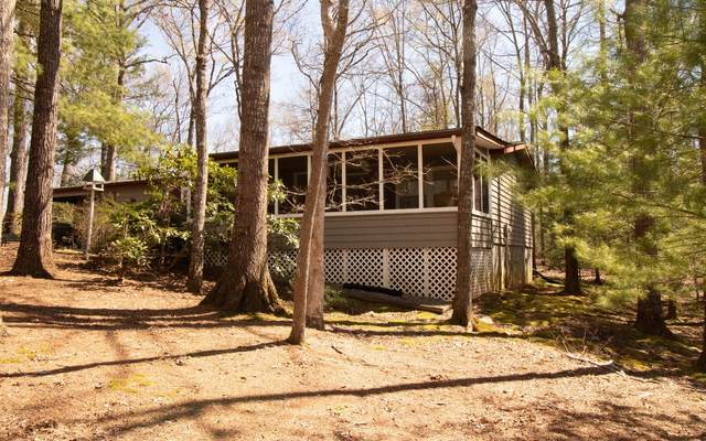 799 Lakeside Drive, Blairsville, GA 30512 (MLS #296422) :: RE/MAX Town & Country