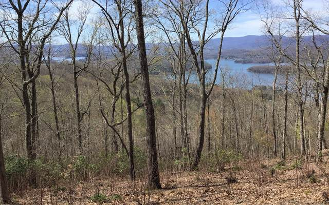 Lot 55 Eagles View, Hayesville, NC 28904 (MLS #296432) :: RE/MAX Town & Country