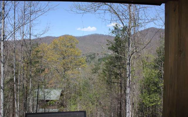 18 Lynnmarie, Blairsville, GA 30512 (MLS #296463) :: RE/MAX Town & Country