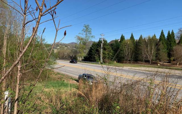 Highway 76 West, Hiawassee, GA 30546 (MLS #296465) :: RE/MAX Town & Country