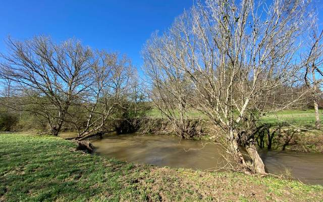 LT 38 Waterside At Br, Morganton, GA 30560 (MLS #296487) :: RE/MAX Town & Country