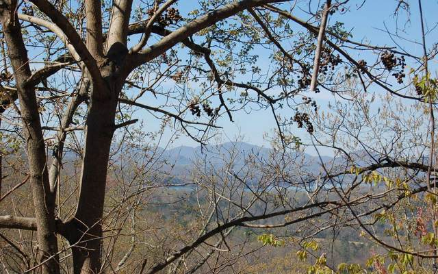 Mountain Harbour 52M, Hayesville, NC 28904 (MLS #296492) :: RE/MAX Town & Country