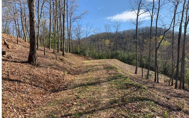 Shepherd Drive, Hayesville, NC 28904 (MLS #296507) :: RE/MAX Town & Country