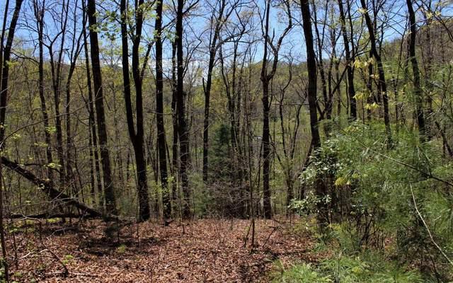 27 Nelson Ridge Dr., Hayesville, NC 28904 (MLS #296632) :: Path & Post Real Estate