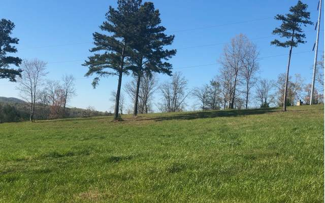 LT 17 Riverside Lk Nottely, Blairsville, GA 30512 (MLS #296643) :: RE/MAX Town & Country