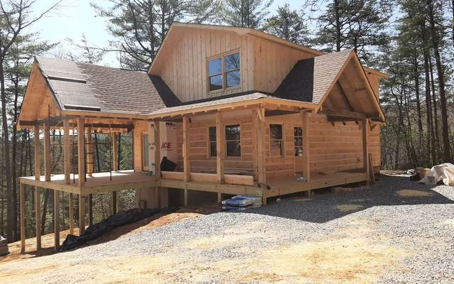 333 Settlers Way, Cherry Log, GA 30522 (MLS #296706) :: RE/MAX Town & Country