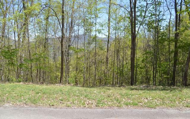 LOT 2 Morgan Ridge, Young Harris, GA 30582 (MLS #296711) :: RE/MAX Town & Country