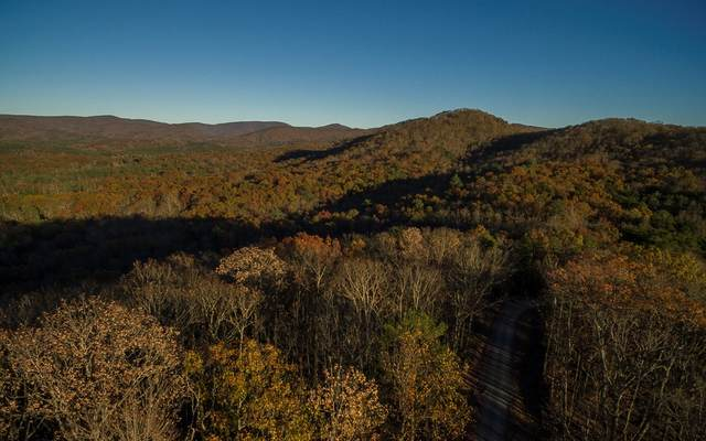LOT18 Tanager Trail, Ellijay, GA 30536 (MLS #296733) :: RE/MAX Town & Country