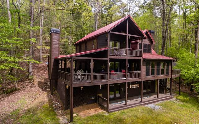 19 Neaptide Dr, Ellijay, GA 30540 (MLS #296818) :: RE/MAX Town & Country