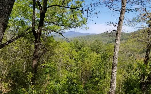 55 Hidden River, Hayesville, NC 28904 (MLS #296880) :: Path & Post Real Estate