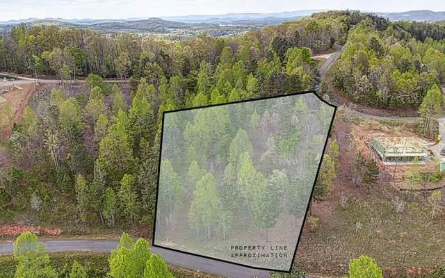 LT 44 The Hills@Queens Gap, Blairsville, GA 30512 (MLS #296881) :: RE/MAX Town & Country