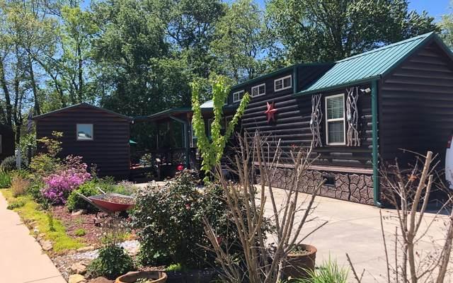 150 Porch View Circle, Blairsville, GA 30512 (MLS #296962) :: RE/MAX Town & Country