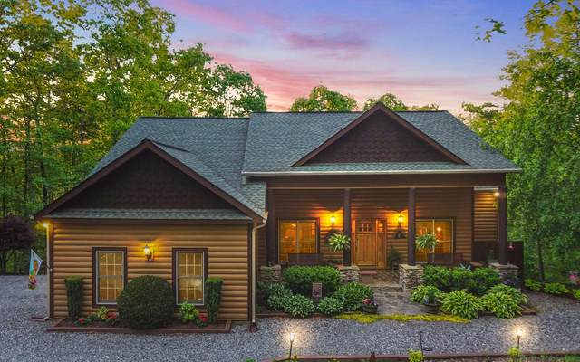 127 Bennett Springs Ct, Mineral Bluff, GA 30559 (MLS #297003) :: RE/MAX Town & Country