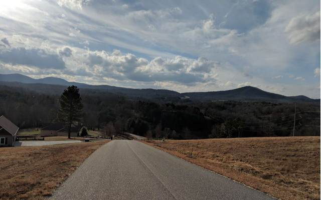 LOT13 Riverside Lk Nottely, Blairsville, GA 30512 (MLS #297056) :: RE/MAX Town & Country