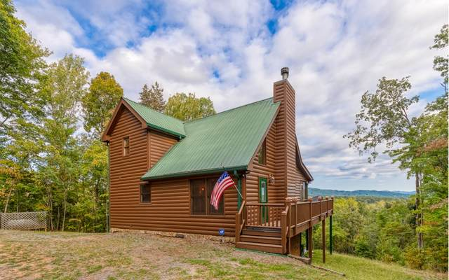 262 Granny Hughes Rd, Mineral Bluff, GA 30559 (MLS #297073) :: RE/MAX Town & Country
