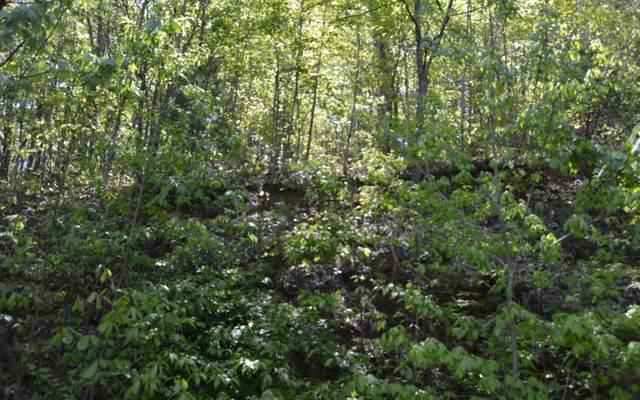 #34 Overlook At Yh, Young Harris, GA 30582 (MLS #297095) :: Path & Post Real Estate