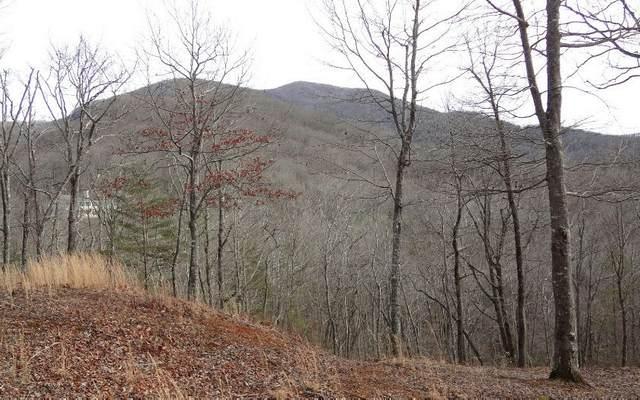 LOT10 Mountain Valley View, Hiawassee, GA 30546 (MLS #297136) :: Path & Post Real Estate