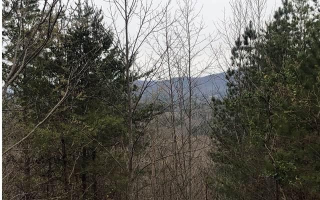 30 Loftis Mtn, Blairsville, GA 30512 (MLS #297149) :: RE/MAX Town & Country
