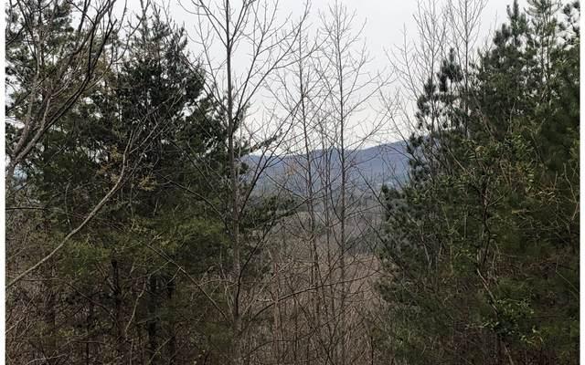 29 Loftis Mtn, Blairsville, GA 30512 (MLS #297150) :: RE/MAX Town & Country