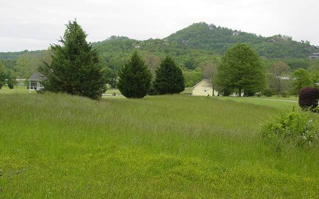 #13 Bell Creek Cove, Hiawassee, GA 30546 (MLS #297205) :: Path & Post Real Estate