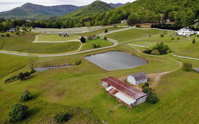 4 Trackrock Valley Far, Blairsville, GA 30512 (MLS #297234) :: RE/MAX Town & Country