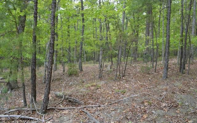 LT 43 Sharptop Settlement, Blairsville, GA 30512 (MLS #297236) :: Path & Post Real Estate