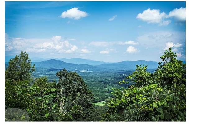 10 A Grant Drive, Brasstown, NC 28902 (MLS #297242) :: RE/MAX Town & Country