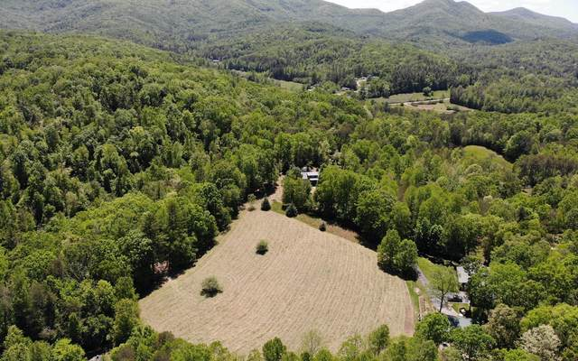 Heathers Hill (Acrs), Blairsville, GA 30512 (MLS #297301) :: RE/MAX Town & Country
