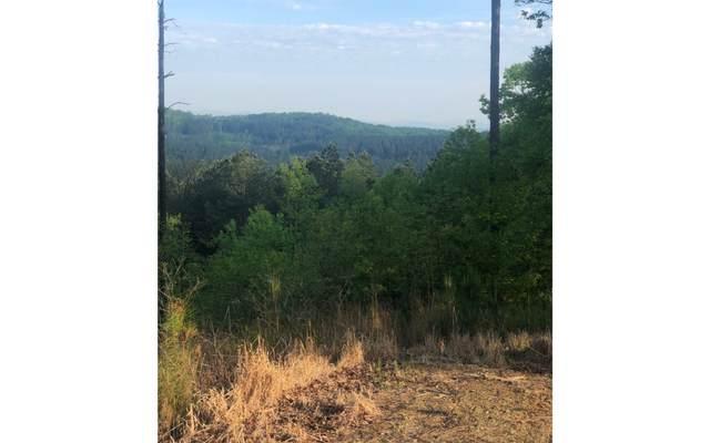 87 Thirteen Hundred, Blairsville, GA 30512 (MLS #297326) :: RE/MAX Town & Country