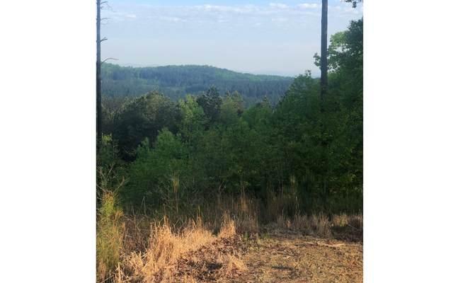 88 Thirteen Hundred, Blairsville, GA 30512 (MLS #297329) :: RE/MAX Town & Country