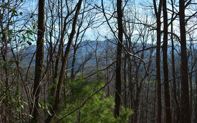 TR 2 Twiggs Dr, Hiawassee, GA 30546 (MLS #297382) :: RE/MAX Town & Country