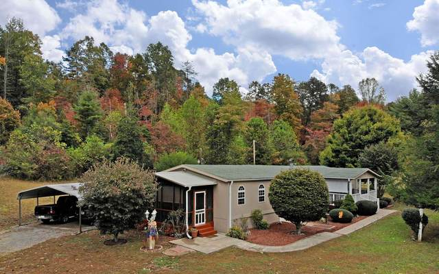 4196 Lower Bear Paw Road, Murphy, NC 28906 (MLS #297389) :: RE/MAX Town & Country