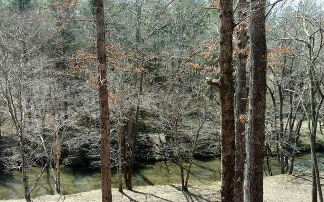 1918 Creekstone Lane, Young Harris, GA 30582 (MLS #297390) :: RE/MAX Town & Country