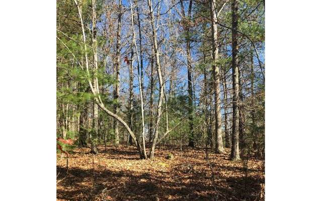 0 Copperhead Trl, Mineral Bluff, GA 30559 (MLS #297439) :: RE/MAX Town & Country