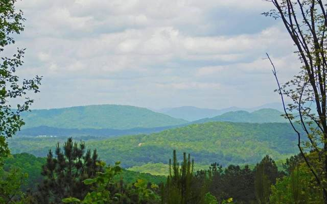 LOT83 Thirteen Hundred, Blairsville, GA 30512 (MLS #297441) :: RE/MAX Town & Country
