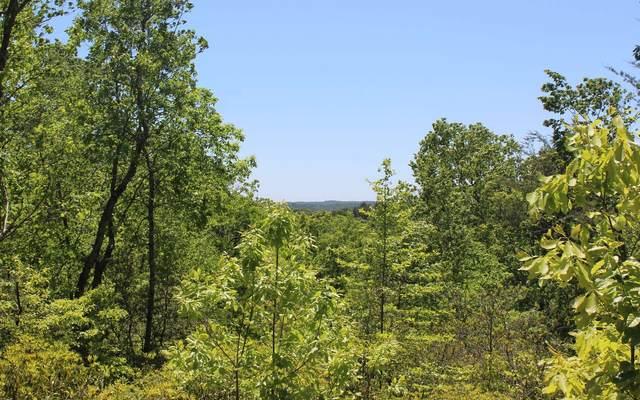 LOT 5 Owl Mountain Road, Ellijay, GA 30536 (MLS #297468) :: RE/MAX Town & Country