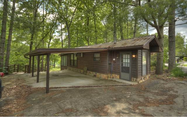 349 Stewart Camp Point, Blue Ridge, GA 30513 (MLS #297481) :: RE/MAX Town & Country
