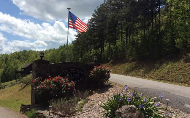 LOT53 Treeline Dr, Blairsville, GA 30512 (MLS #297491) :: RE/MAX Town & Country